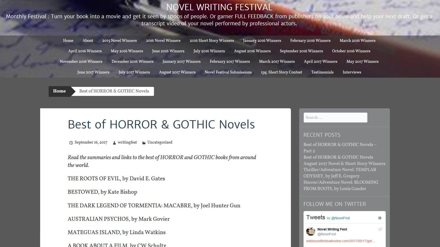 Novel Festival - WINNER
