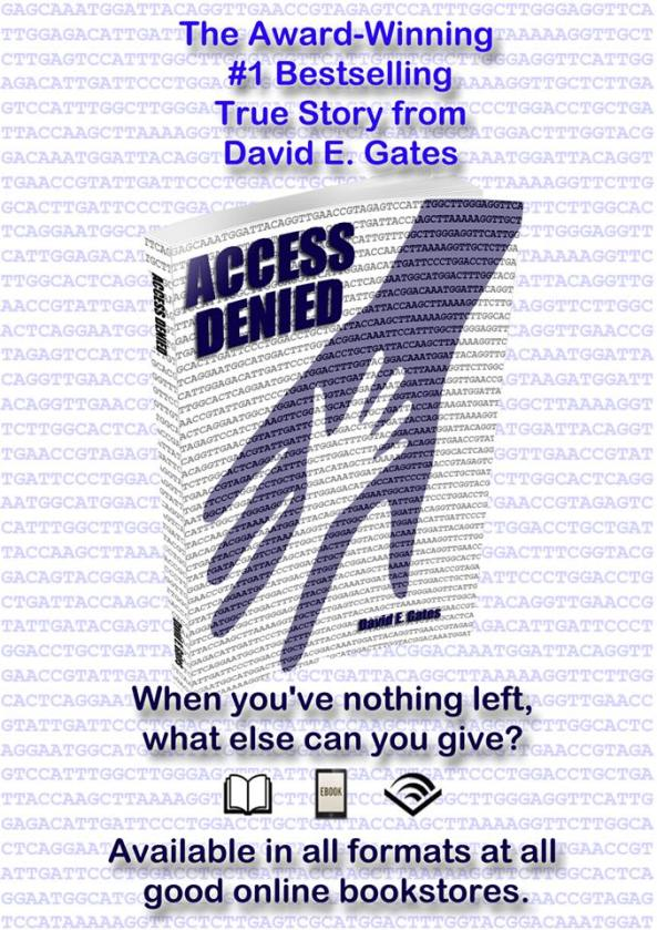Access Denied Poster Nothing Left